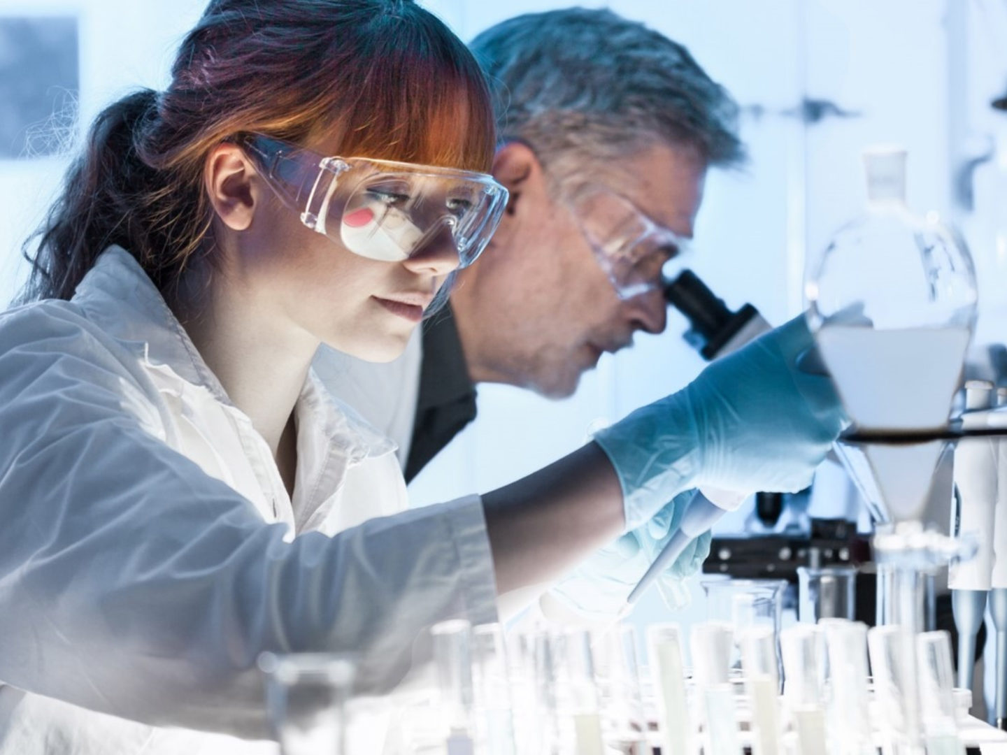 Chemists working in Lab - Lab and Testing Services   NSF International