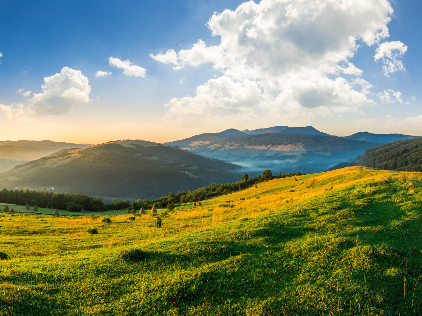 Landscape of Fields and Mountains - Sustainability Consulting Solutions | NSF International