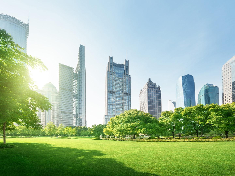 Park with city skyline