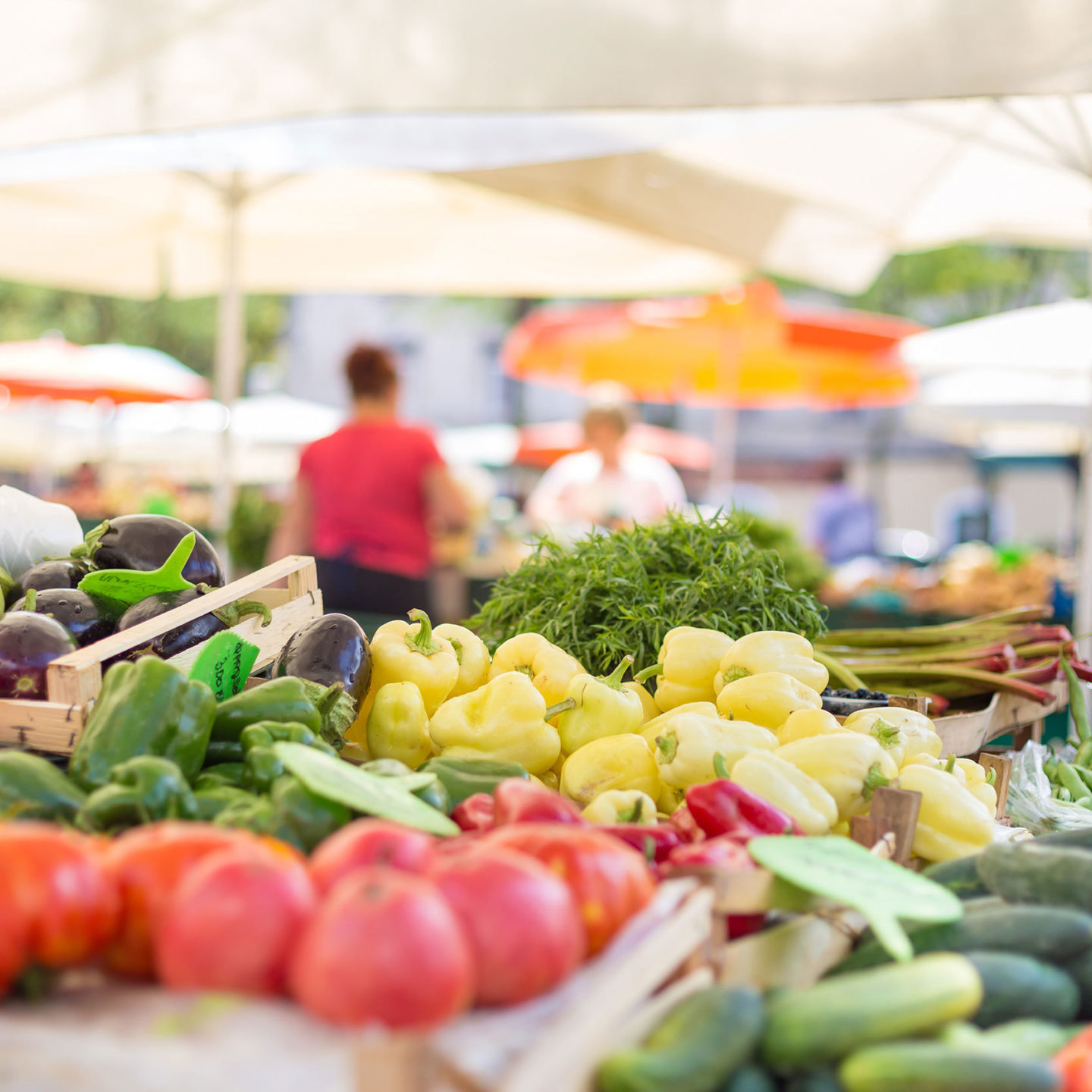 Farmers market stall with variety of organic vegetable