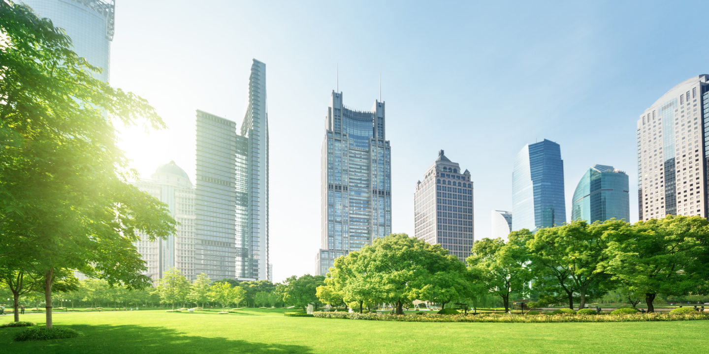 Park with city skyline-Sustainability Strategy Development Consulting Services