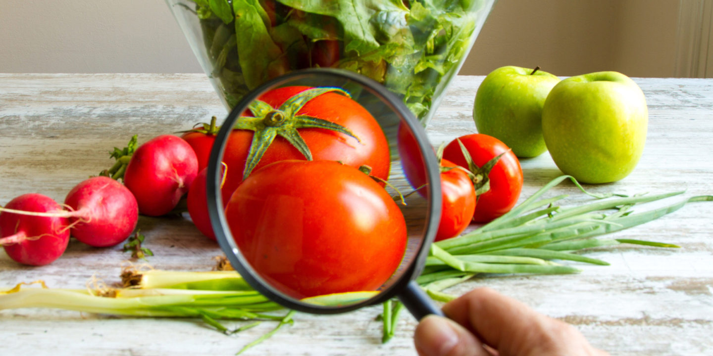 Analyzing a tomato with a magnifying glass
