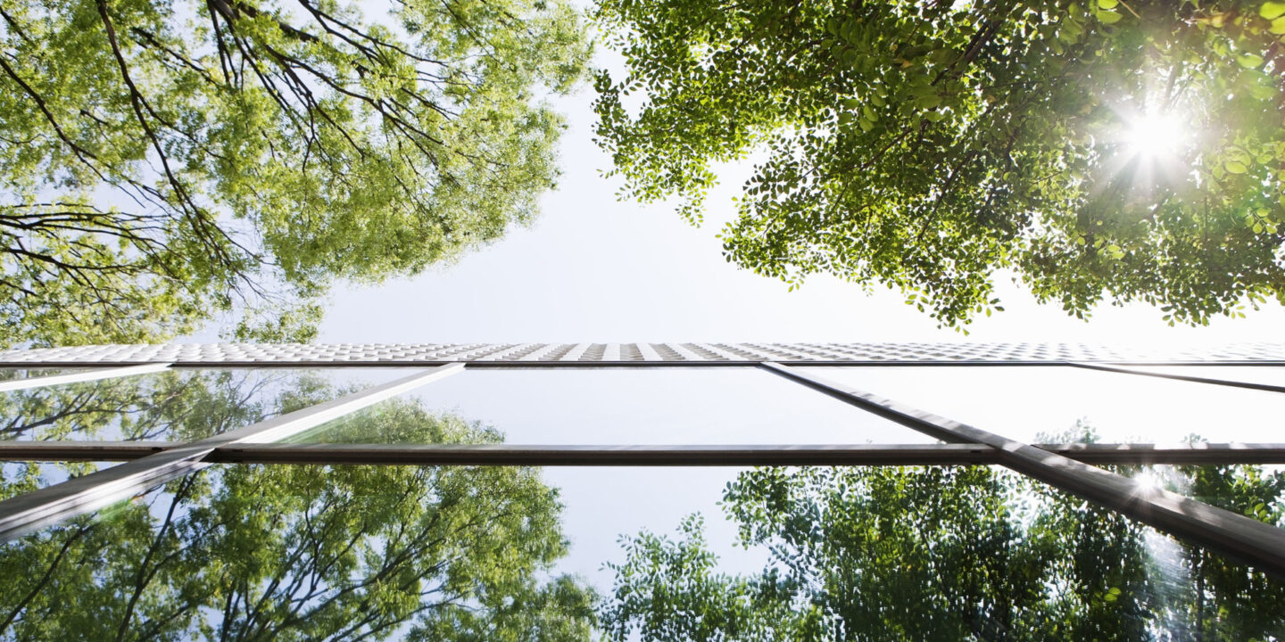 Trees reflecting in building's windows - Call for Pilot Participants | NSF International