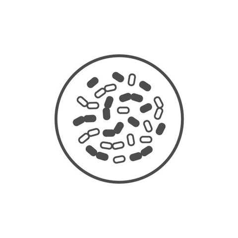Icon bacteria closeup 40289977 786x720