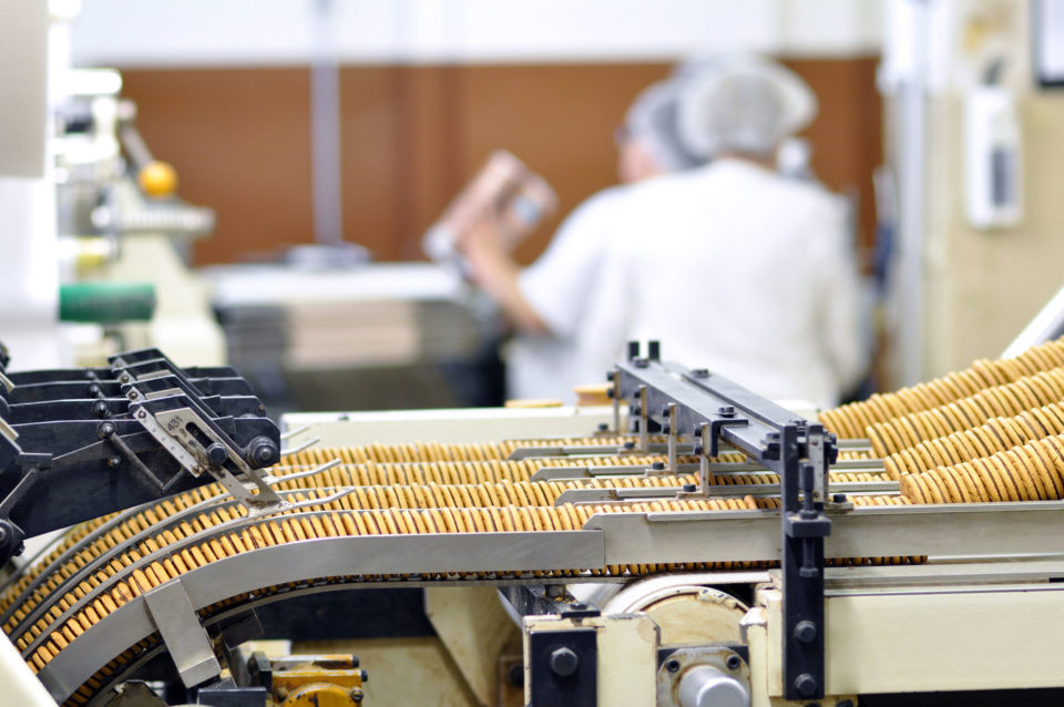 Biscuit production in a factory on a conveyor belt