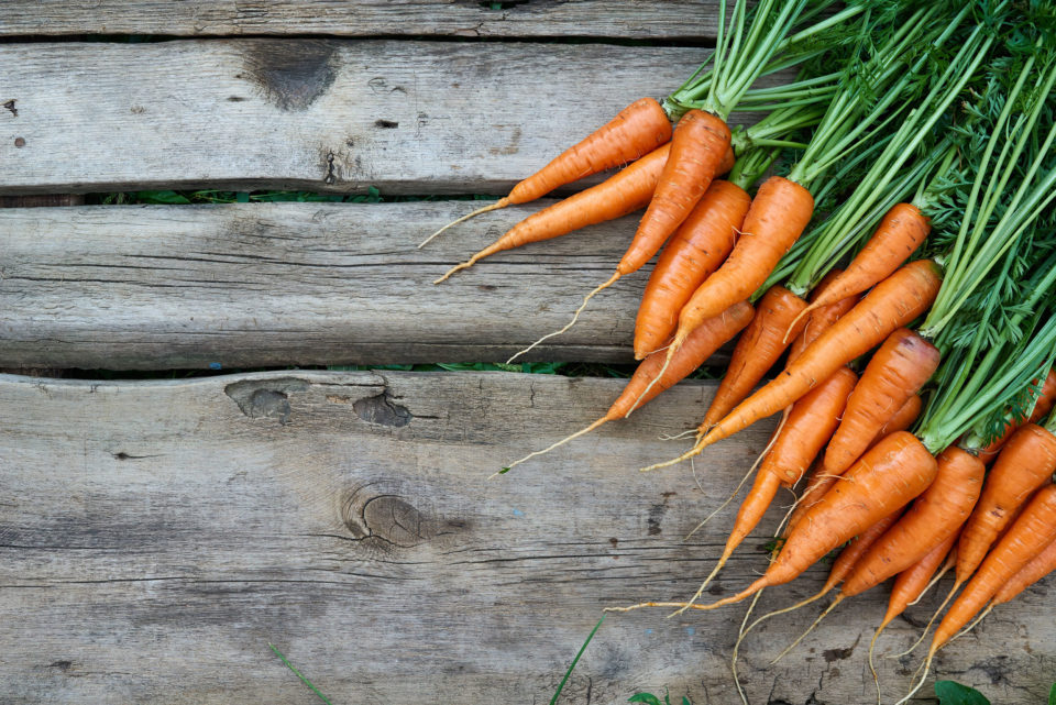 Carrot bunch on a wood slat background