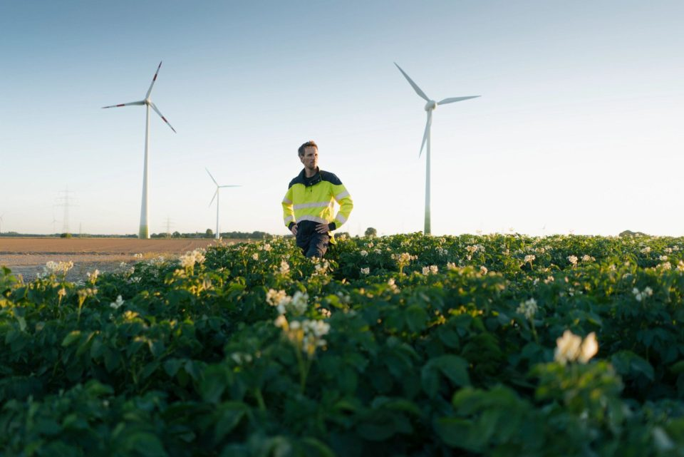 Man standing in field with windmills in the background