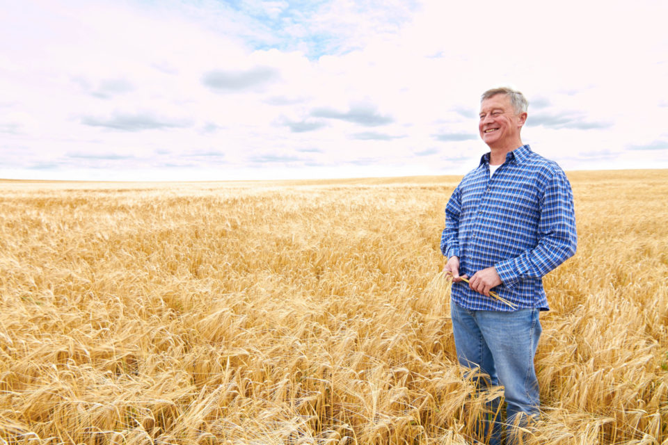 Man smiling in crop field