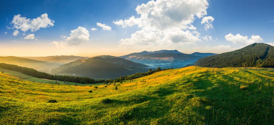 Sunny mountainside 37278625