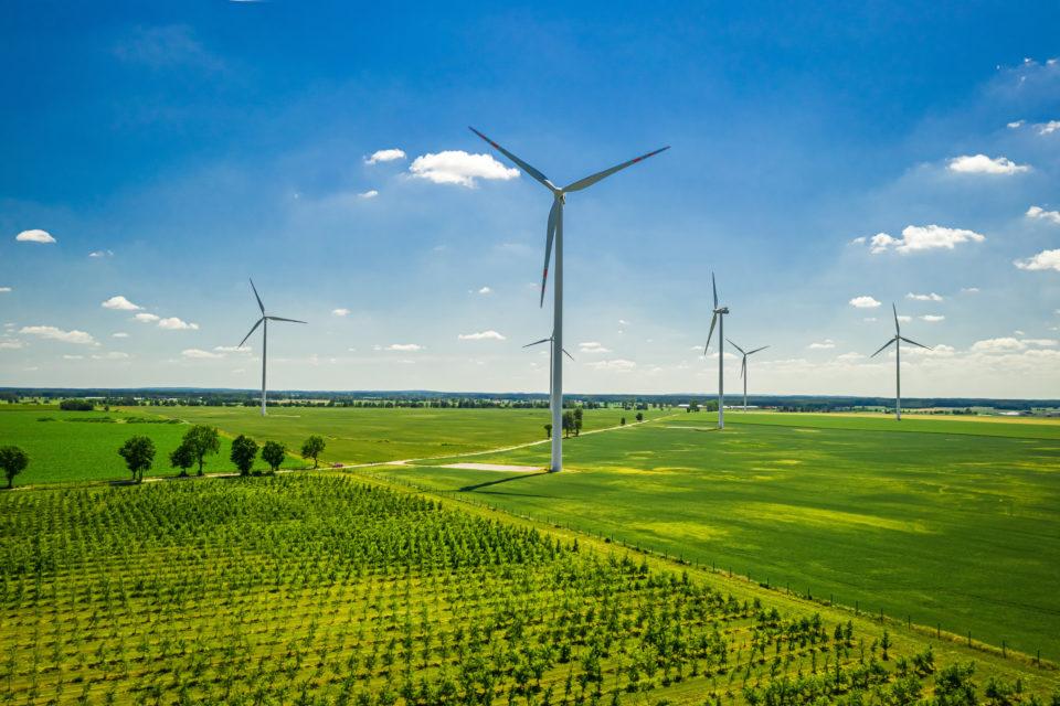 Wind turbines in field - Global Wind Organisation Certification