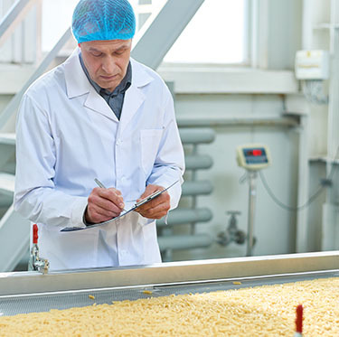 Man inspecting product in food factory