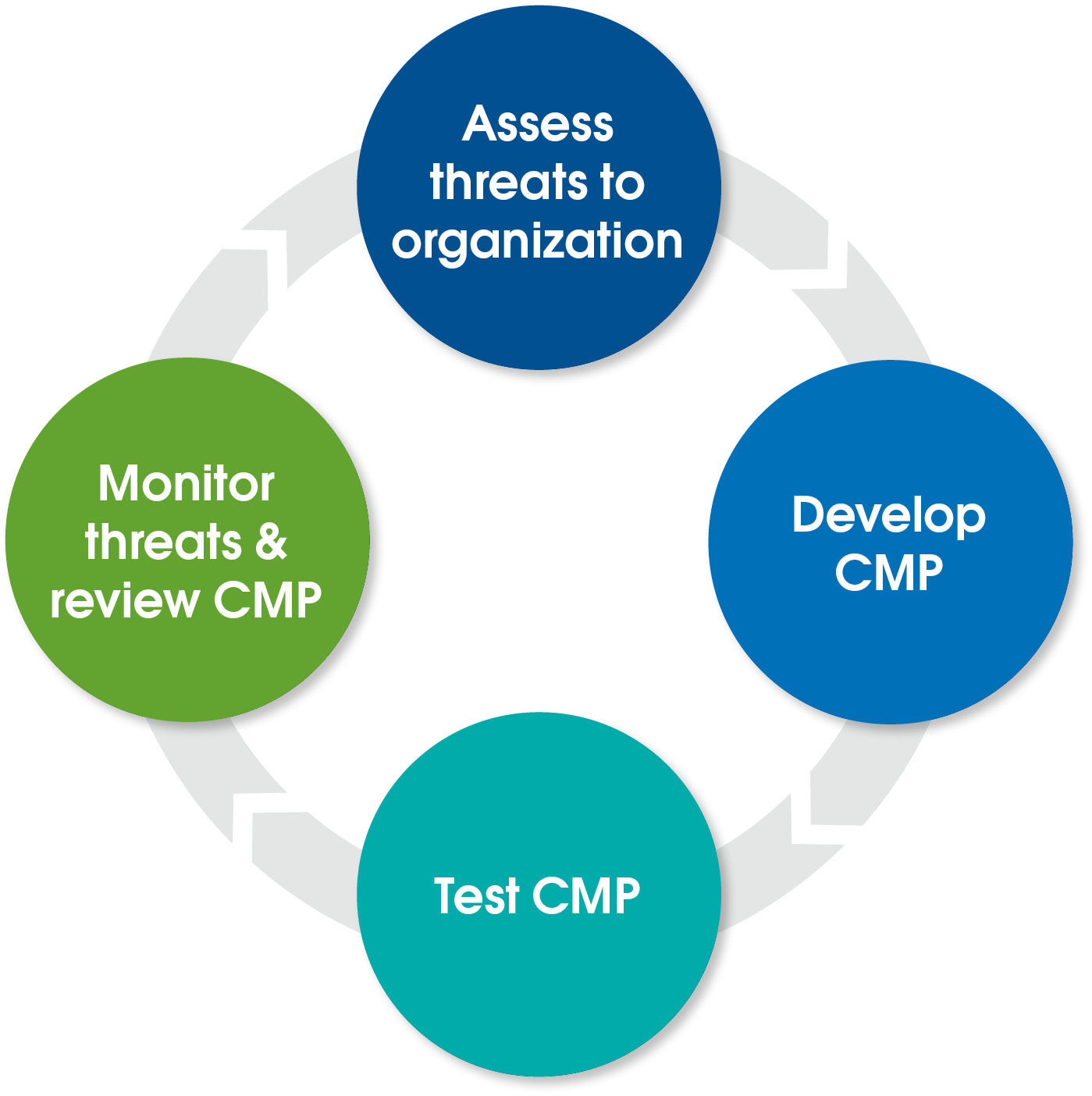 Steps in Developing and Maintaining a CMP